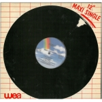 12 Maxi Single - The Damned